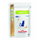 DIABETIC GATTO UMIDO