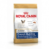 BULLDOG FRANCESE JUNIOR